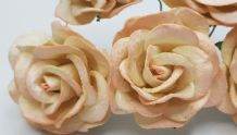 LIGHT ROSE PINK GRANDIFLORA (3.5 cm) Mulberry Paper Roses